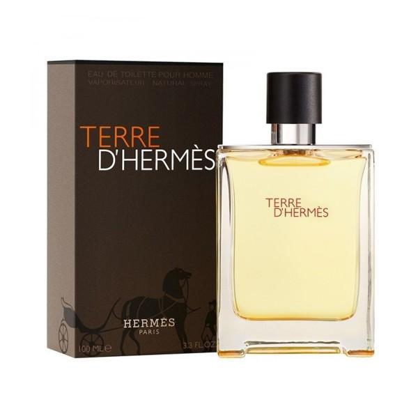 Hermes paris terre d'hermes eau de toilette 100ml vaporizador